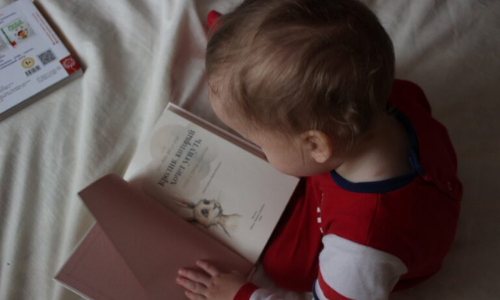 Top 5 Teddy Bear Books For Little Ones